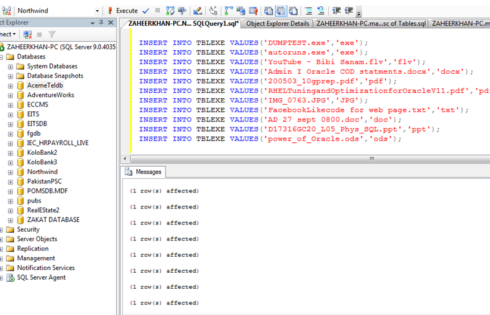The SQL Extension – Features Of The CTS